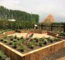 Raised_Beds_Lynsted