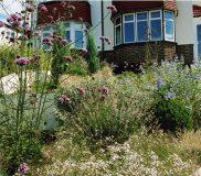 Small Front Garden, Orpington 3