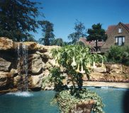 Garden & Swimming Pool, Westerham 3