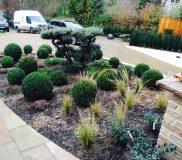 Halstead Garden Design, Kent